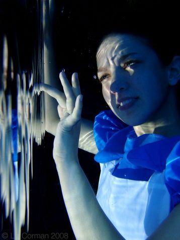 2008, digital, Laura Winslow Yoch
